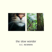 A.C. Newman - The Slow Wonder