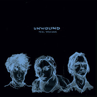 Unwound - Peel Sessions