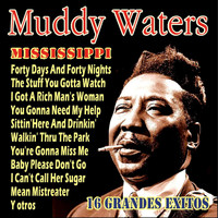 Muddy Waters - Muddy Waters - 16 Grandes Exitos