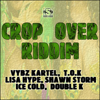 Vybz Kartel - Crop over Riddim