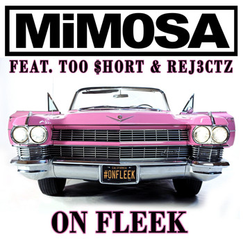 Too Short - On Fleek (feat. Too Short & Rej3ctz)
