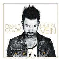 David Cook - Carry You - Single