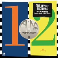 The Neville Brothers - Fly Like An Eagle