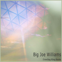 Big Joe Williams - Crawling King Snake