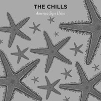 The Chills - America Says Hello