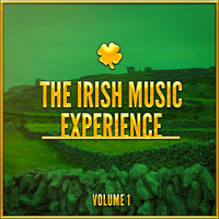 Celtic Spirit - The Irish Music Experience, Vol. 1 (A Selection of Traditional Music from Ireland)