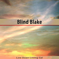 Blind Blake - Low Down Loving Gal