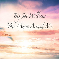 Big Joe Williams - Your Music Around Me