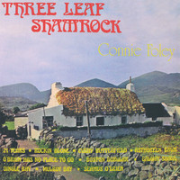 Connie Foley - Three Leaf Shamrock