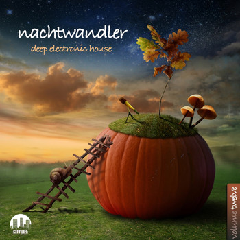 Various Artists - Nachtwandler, Vol. 12 - Deep Electronic House