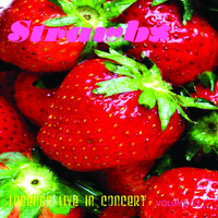 The Strawbs - Legends Live In Concert Vol. 13