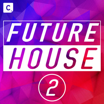 Various Artists - Future House 2