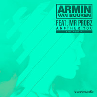 Armin van Buuren feat. Mr. Probz - Another You (CID Remix)
