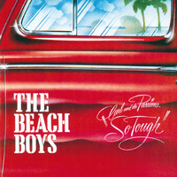 The Beach Boys - Carl & The Passions - So Tough