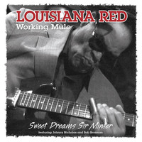 Louisiana Red - Working Mule