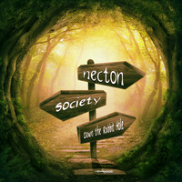 Necton - Down the Rabbit Hole