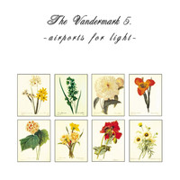 The Vandermark 5 - Airports For Light