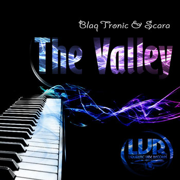 Blaq Tronic - The Valley