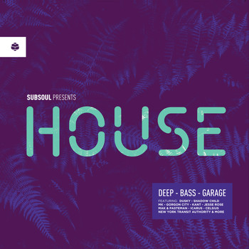 Various Artists - Subsoul Presents: House