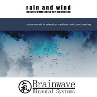 Brainwave Binaural Systems - Rain and Wind Natural White Noise for Meditation