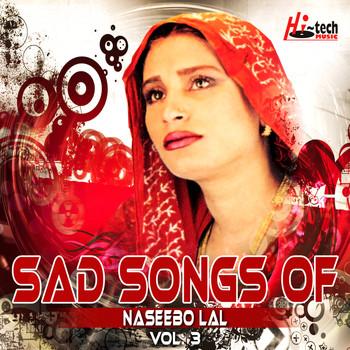 Sad Songs Of Naseebo Lal Vol 3 Naseebo Lal Mp3 Downloads 7digital United States
