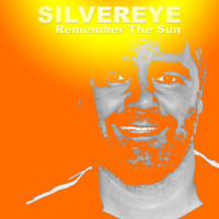Silvereye - Remember the Sun