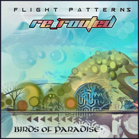 Birds of Paradise - Flight Patterns (Re-Routed)