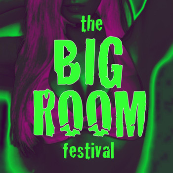 Various Artists - The Big Room Festival