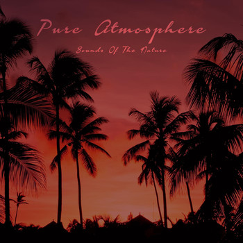Various Artists - Pure Atmosphere - Sounds of the Nature