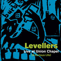 Levellers - A Curious Life