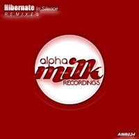 Hibernate - In Silence (Remixes)