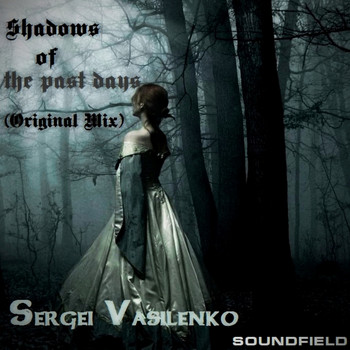 Sergei Vasilenko - Shadows of The Past Days
