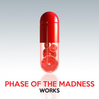 Phase Of The Madness - Phase of the Madness Works
