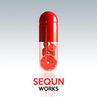 Sequn - Sequn Works