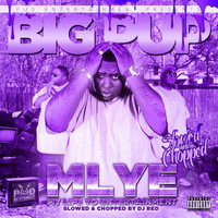 Big Pup - My Life Yo Entertainment (Slowed & Chopped)