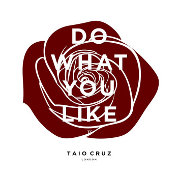 Taio Cruz - Do What You Like
