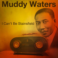 Muddy Waters - I Can't Be Staisfield