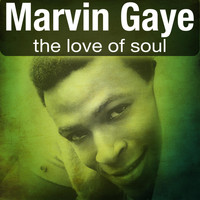 Marvin Gaye - The Love of Soul