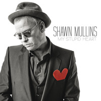 Shawn Mullins - My Stupid Heart