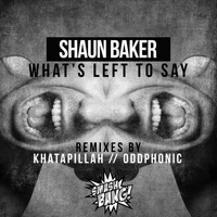 Shaun Baker - What's Left To Say