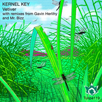 Kernel Key - Vetiver