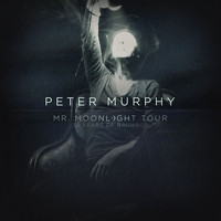 Peter Murphy - Mr. Moonlight Tour - 35 Years of Bauhaus (Live)