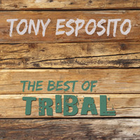 Tony Esposito - The Best of Tribal