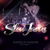 Slow Jams - Shades of Pleasure, Vol. 1