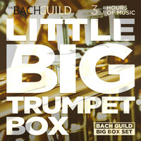 Various Artists - Little Big Trumpet Box