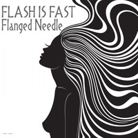 Flash Is Fast - Flanged Needle