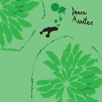 Animal Collective - Danse Manatee