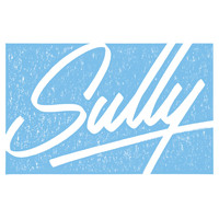 Sully - Flock