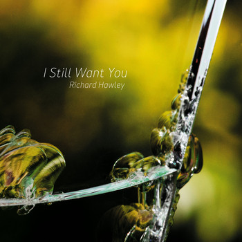 Richard Hawley - I Still Want You