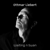 Ottmar Liebert - Waiting n Swan